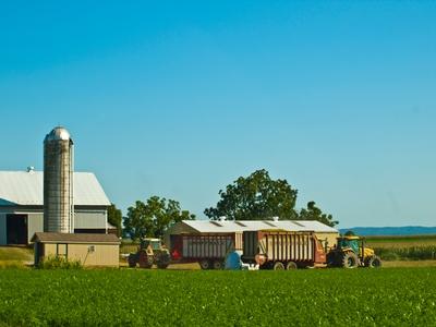 строительство фермы под ключ