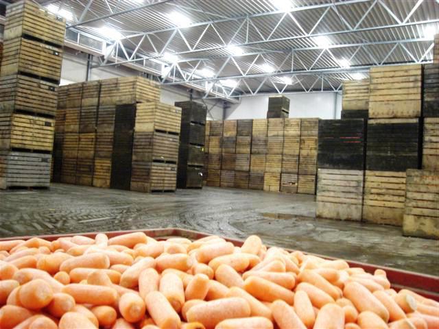 строительство склада для хранения овощей