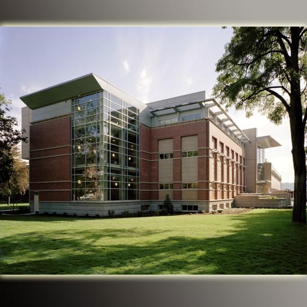 строительство институтов